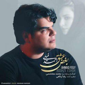 احمد فیلی بغض عشق