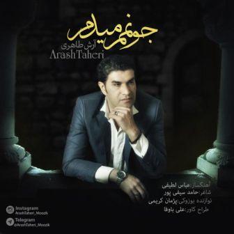 آرش طاهری