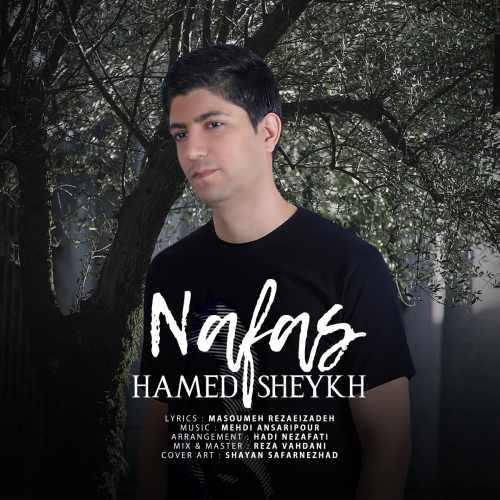 حامد شیخ نفس