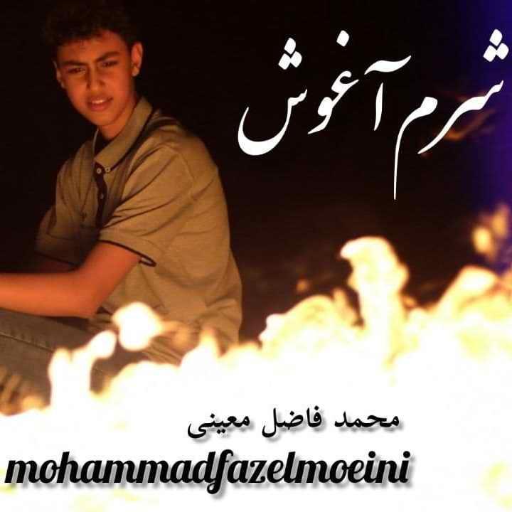 محمدفاضل معینی شرم آغوش