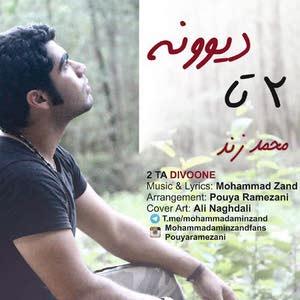محمد زند ۲تا دیوونه