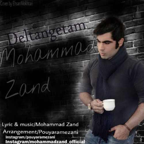 محمد زند دلتنگتم