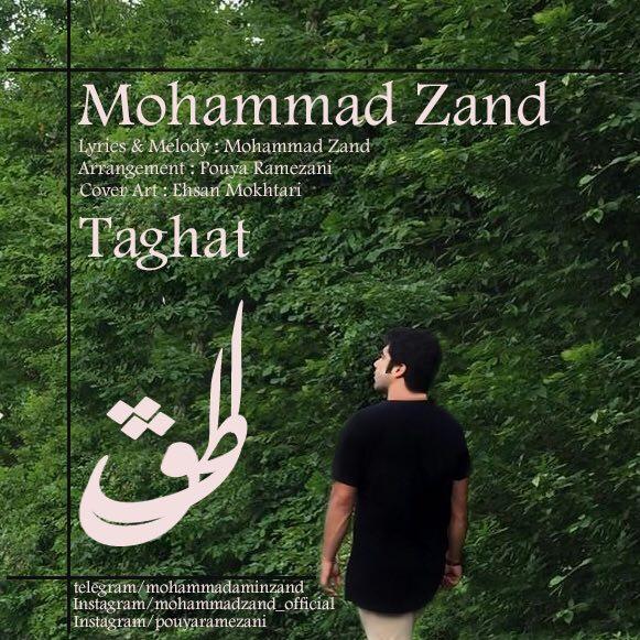 محمد زند طاقت