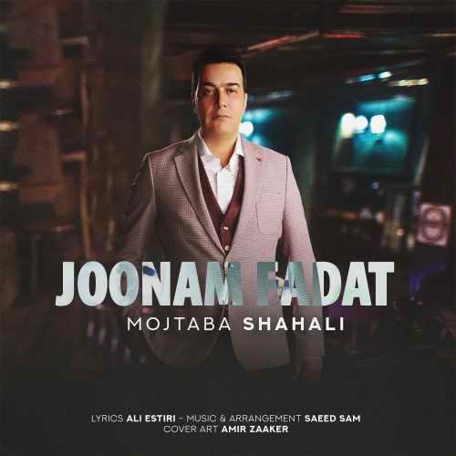 دانلود آهنگ جدید مجتبی شاه علی بنام جونم فدات